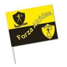 Flaggen bunt | 21 x 31 | 942026