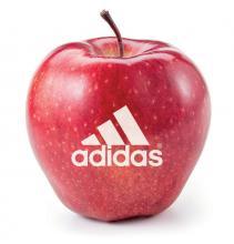Apfel | Rot oder Grün