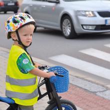 Sicherheitsweste Kinder | 3-4 Jahre| Schnell