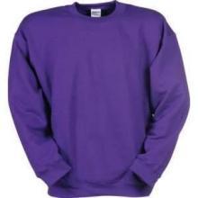 Qualitätssweatshirt | 3723809 Violett