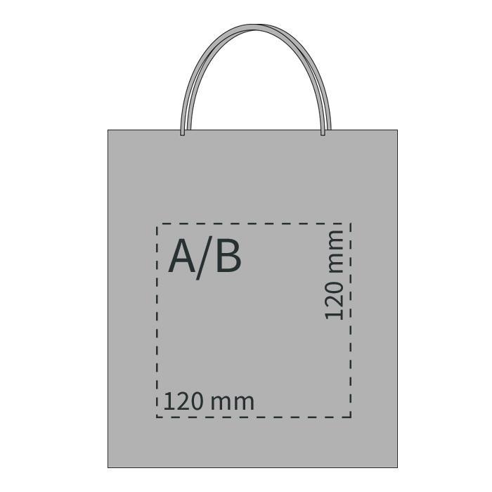 Papiertragetasche klein (DIN A5) | 64270255VVK Silber
